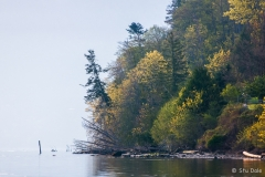 Fall_Colours_by_the_Sea_-_S0005